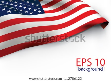 USA Flag - Old Glory flag VECTOR