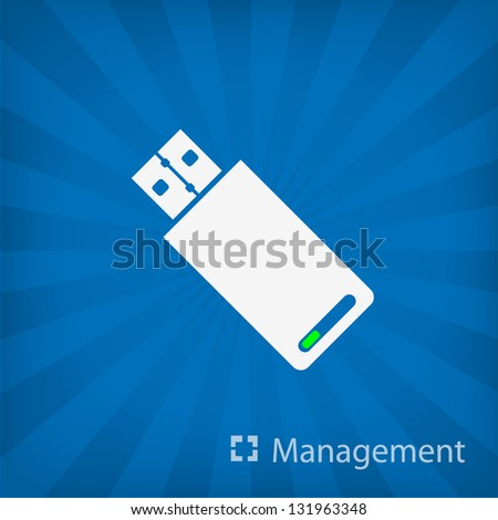 Usb Stick icon (Management) - stock vector