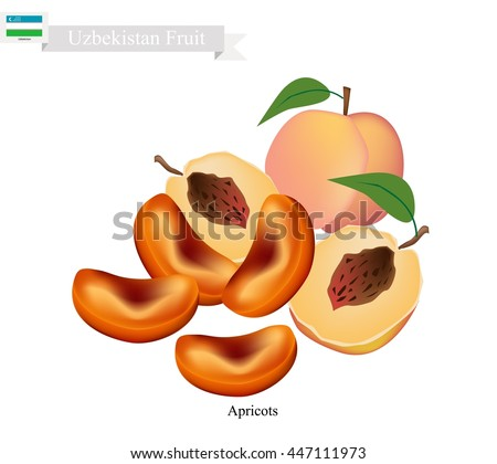 most healthy dried fruit asian fruit