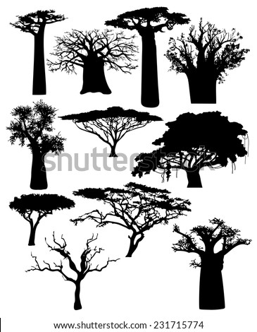 various African trees and bushes - stock vector