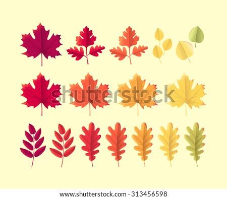 Various autumn leaves set. Colorful retro design elements. Maple, oak, mountain ash, rowan, linden, hawthorn - stock vector