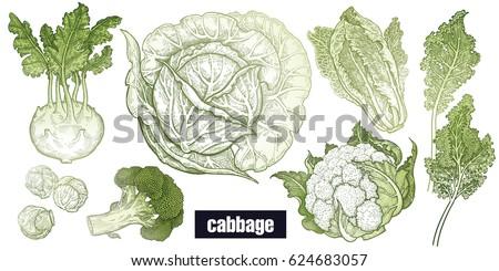how to draw a cauliflower