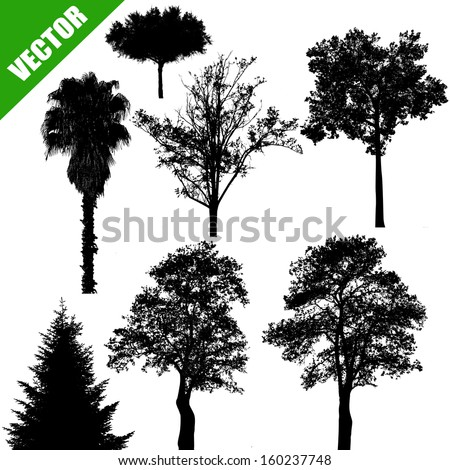 Various drawing of the trees on white background, vector illustration - stock vector