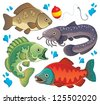 Various freshwater fishes 2 - vector illustration. - stock vector