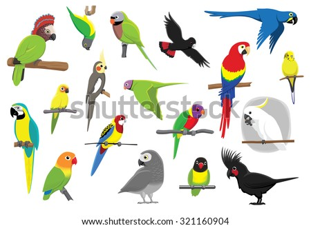 Various Parrots Cartoon Vector Illustration - stock vector