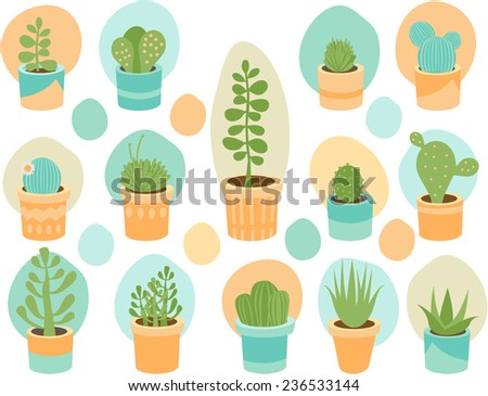 Various succulent flower mix in decorative planters - stock vector