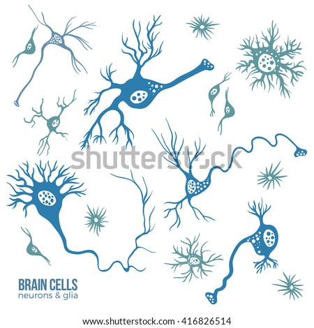 Various types of brain cells, doodle background for your science, medicine or education-related design. - stock vector