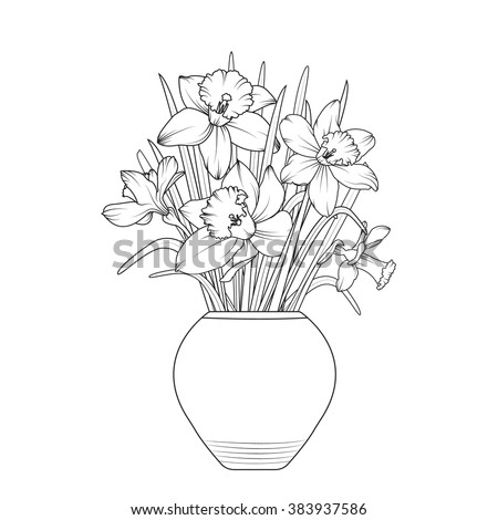 vase of flowers narcissus daffodil flowerpot isolated spring bouquet outline black and white