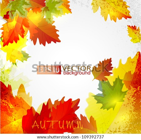 Vector abstract background with autumn leaves