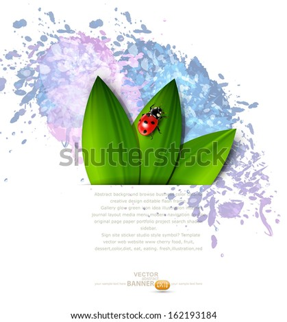 vector abstract background with splashes of paint, green leaves and ladybug