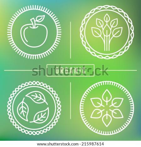Vector abstract emblem - outline monogram - nature symbols - concept for organic shop - abstract design element - logo design template - stock vector