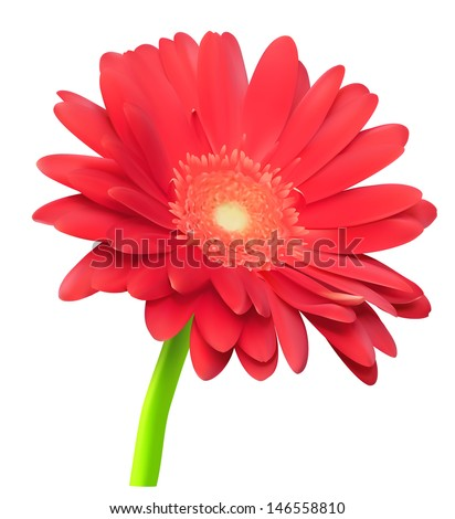 Vector abstract gerbera flower - stock vector