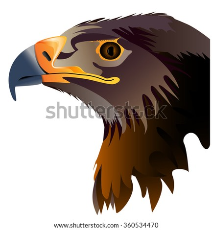 Vector abstract illustration of eagle head isolated on white background - stock vector
