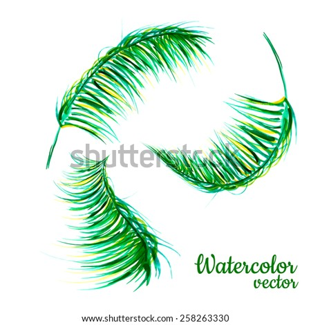 Vector abstract watercolor banners with palm leaves. Design template with place for your text. - stock vector