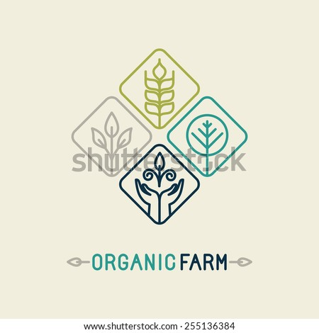 Vector agriculture and organic farm line logo - design elements and badge for food industry - stock vector