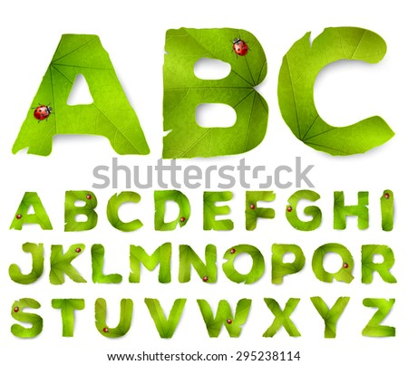 Vector alphabet letters made from green leaves, isolated on white - stock vector