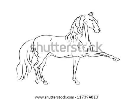 Vector Andalusian horse in motion - stock vector