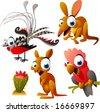 vector animal set 65: australian: lyrebird, opossum, kangaroo, cockatoo - stock vector