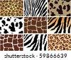 vector animal skin - stock vector
