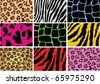 vector animal skin of different animals - stock vector