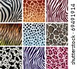 vector animal skin textures of tiger, zebra, giraffe, leopard, cow and cheetah - stock photo