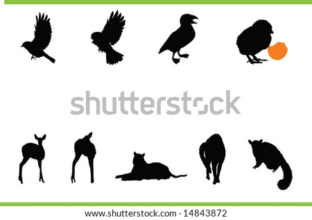 Vector animals collection - stock vector