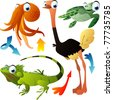 vector animals: octopus, ostrich, turtle, iguana - stock vector