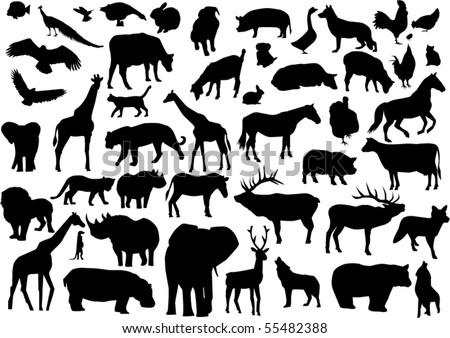 vector animals silhouettes - stock vector