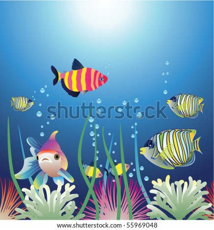 vector aquarium and colorful fishes