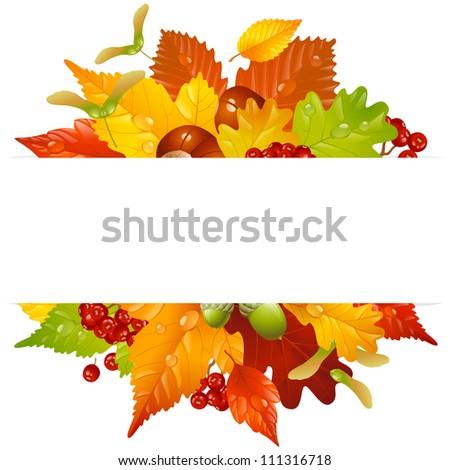 Vector autumn frame with fall leaf, chestnut, acorn and ashberry - stock vector