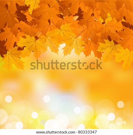 Vector autumn leaves on a bright sunny background - stock vector