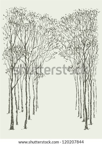 Vector background. Arc-shaped frame made of natural crowns and trunks of trees - stock vector