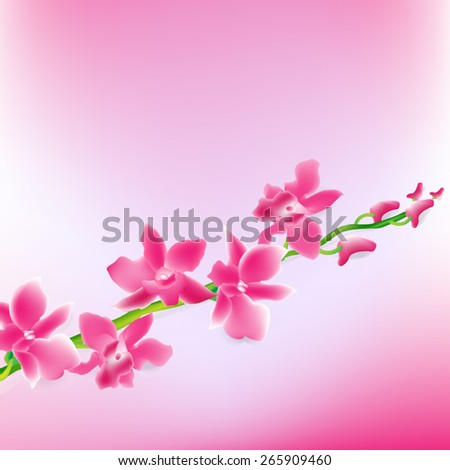VECTOR BACKGROUND: Beautiful Pink Orchids