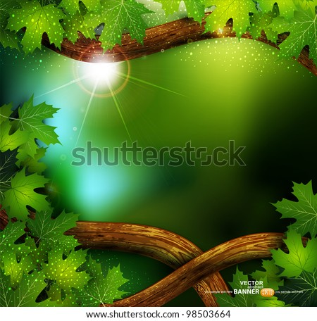 vector background of the mystical mysterious forest with trees and leaves - stock vector