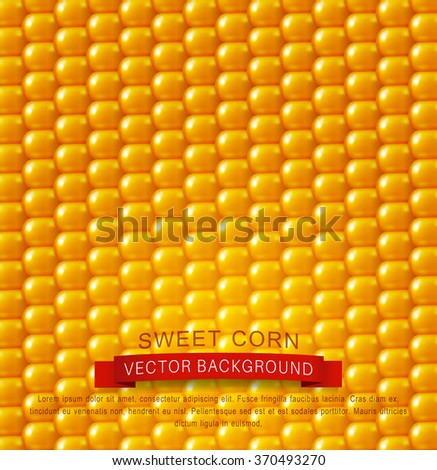 vector background texture, yellow corn. design element - stock vector