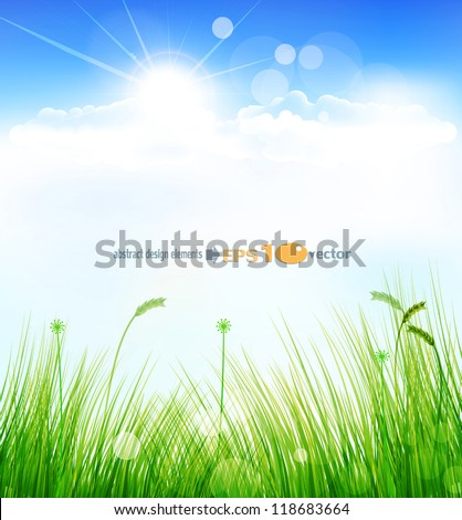 vector background with a blue sky, grass and sun - stock vector
