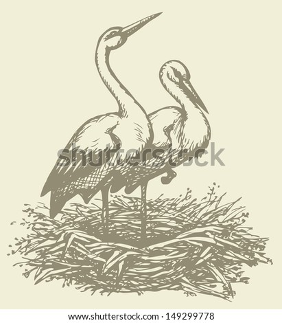 Vector background with a graphic monochrome drawings of pairs of storks in the nest  - stock vector