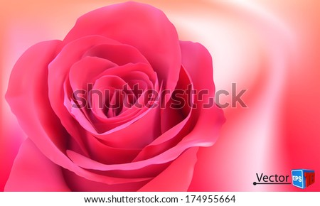 vector background with beautiful pink rose/ business brochure/ Abstract background EPS10 - stock vector
