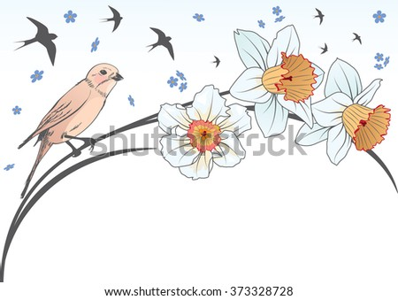 vector background with bird and flowers of narcissus - stock vector