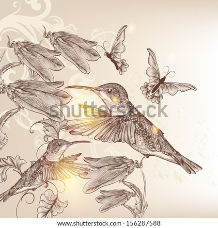 Vector background with birds and butterflies in vintage style for design - stock vector