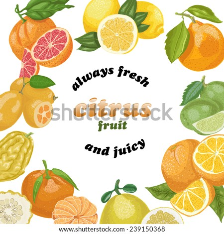 Vector background with citrus fruits and the inscription on the center - stock vector