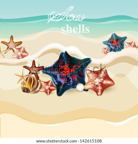 Vector background with detailed shells on a sand for summer design