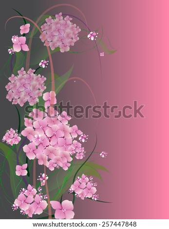 vector background with flowers pink hydrangea design for holidays, celebrations, weddings, love, spring - stock vector