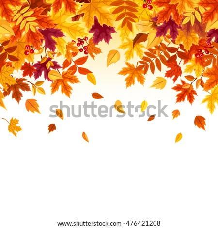Vector background with red, orange, brown and yellow falling autumn leaves.