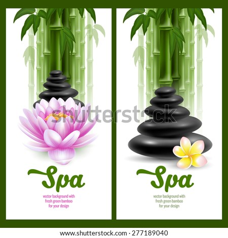 Vector banners on spa theme with bamboo, massage stone, frangipani and lotus  - stock vector