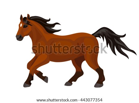Vector bay running horse on white background
