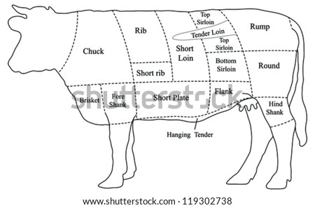 Moose Meat Chart likewise Diagram Structure Cerebral Cortex 572415901 moreover Page 4494213 in addition Information Processing Diagram together with Ham Cuts Diagram. on venison diagram