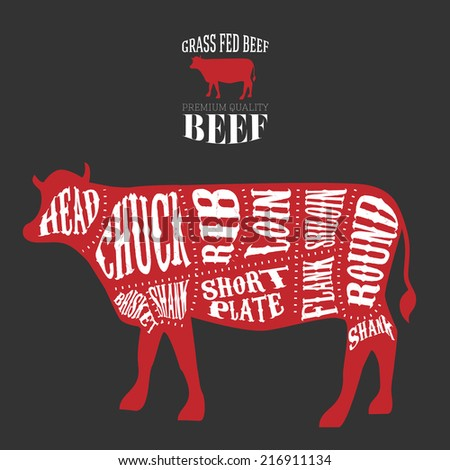 Vector Beef Cuts Diagram in vintage style - stock vector