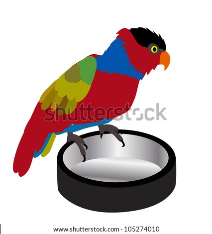 Vector - Beggar parrot.Parrot and a plate for donations. - stock vector