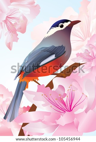 vector bird in spring flowers pink blossom - stock vector
